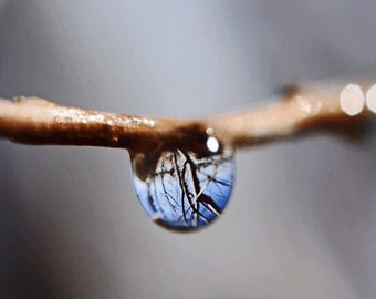 Water Drop Photograph, Spring Water Drop Photograph with Reflection, Macro Photograph, Spring Storm, 5x5 Original Photograph, Home Decore