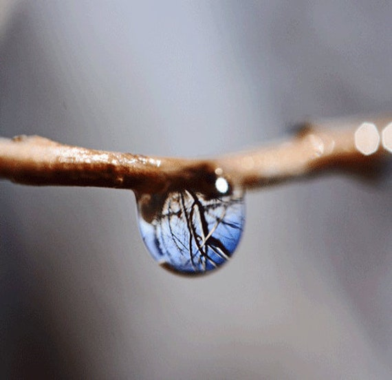 Spring Water Drop Photograph with Reflection - Macro Photograph-Spring Storm - 5x5 Original Photograph-Home Decore-Ready to Ship