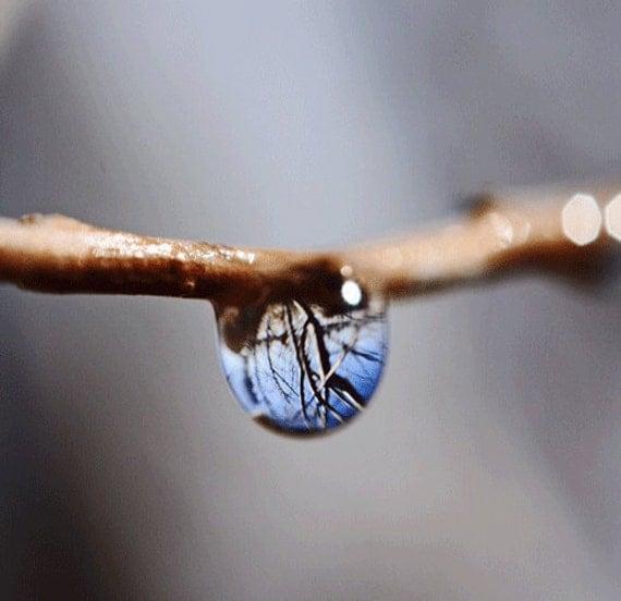 Water Drop Photograph, Spring Water Drop Photograph with Reflection, Macro Photograph, Spring Storm, 5x5 Original Photograph, Home Decore