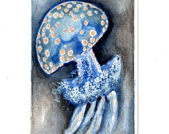 ACEO Original Jellyfish Collectible miniature painting ....watercolour card nature