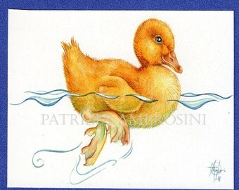 Duckling  ACEO PRINT - open edition - collectible card miniature