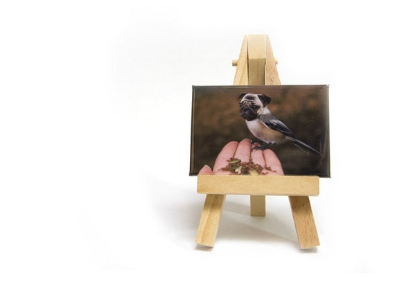 Reserved for Lori Thomas - Fine Art Photo Magnet - Chickapug or Pugadee