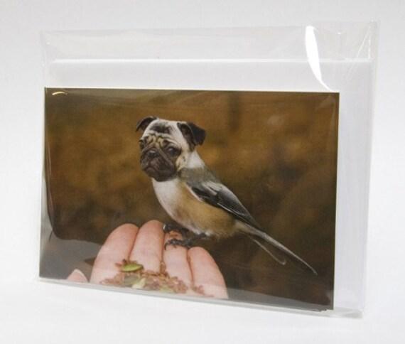 Set of 5 Note Cards - Chickapug - Pugadee - Hybrid Animals - Yahoo - Dird - Purd