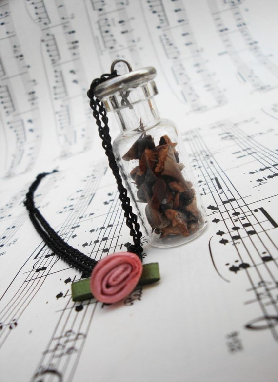Romantic mini bottle necklace with dried thorns and fabric rose by Dryw on Etsy