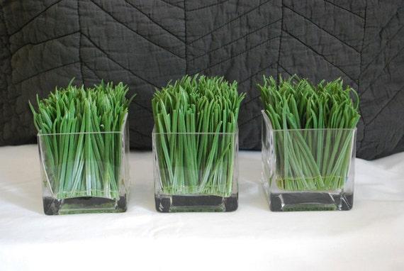 Green Grass Trio