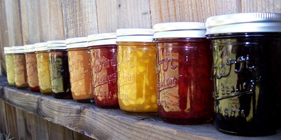 Pick ANY 4 flavors- Jams/Jelly/Salsa- 8oz jars