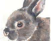 SALE ORIGINAL Bunny Rabbit Watercolor Painting 8x10