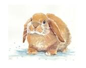Golden Rabbit - ORIGINAL Watercolor Painting - 10x8