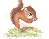 Squirrel Watercolor - Original Painting, Squirrel Illustration, 8x10