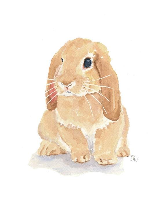 Rabbit Watercolor - Lop Earred Rabbit, Bunny Art, Original Painting, Rabbit Illustration, 8x10
