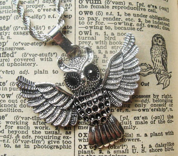 Silver Owl Necklace with Rope Chain