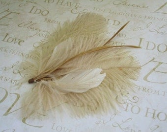 Feather, Wedding, Hair, Accessories, Ivory, cream, yellow, Bridal, Fascinator, Head, Piece, hair clip, brown - DUSTY ANGEL