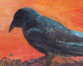 Halloween Crow ACEO original painting  acrylic