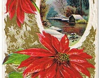 1910 Poinsettia Rural Scene Christmas Postcard