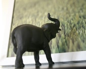 SALE! The Original Chalkboard Elephant - Bobo
