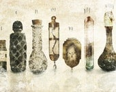 The Vials of Wrath