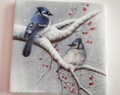 Blue Jays Bird Winter Beverage Coaster Home Décor Upcycled Repurposed