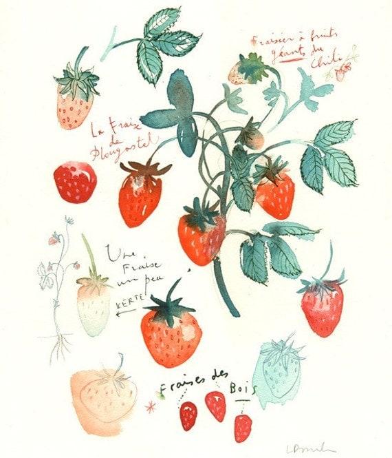 Les fraises - Original watercolor painting