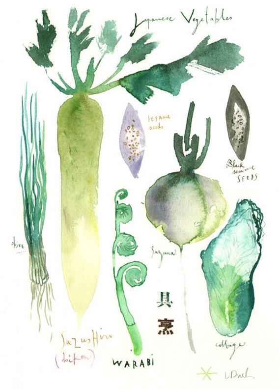 Japanese vegetables botanical plate - Original watercolor painting