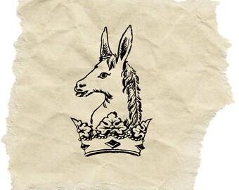 Donkey Stamp B