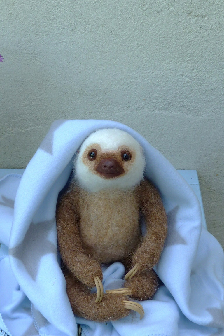 Needle Felted Life Size Two Toed Sloth Baby Boy