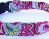 Adjustable Dog Collar, Pink Paisley - Made to Order -