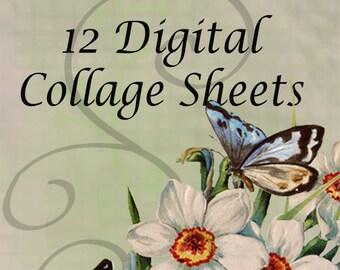 BUNDLE DISCOUNT - Digital Collage Sheet - Clip Art Elements- Digital Scrapbooking-Best Deal- Choose 12 Collage Sheets