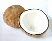Coconut Scent Refill for Wool Dryer Balls
