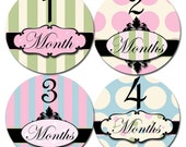 Baby Month Stickers Baby Monthly Stickers Girl Monthly Bodysuit Stickers Baby Shower Gift Photo Prop Baby Milestone Sticker