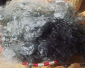 Raw Border Leicester Wool, Silver Grey Yearling fleece 4 ounces