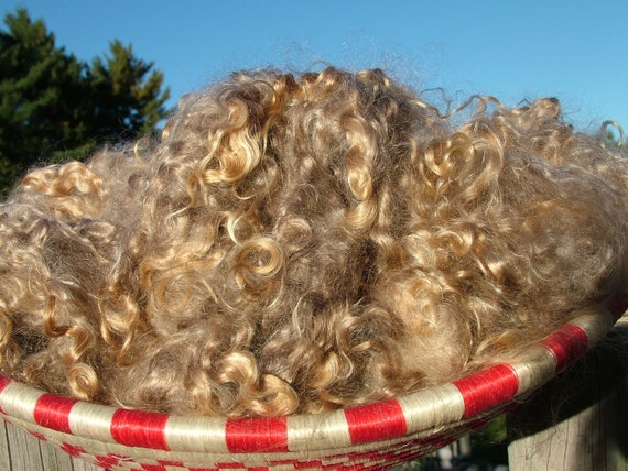 October Phatfiber-1 oz Naturally Colored Kid Mohair Locks-Soft Brown/Grey
