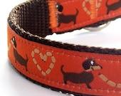 Dachshund Lovers Dog Collar / Orange Wiener Dog / Pet Accessories / Adjustable