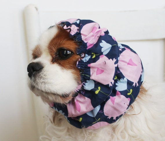 Little Piggy Dog Snood / Cavalier and Cocker Long Ear Covering / Only XS and Small available