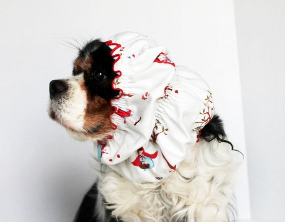 Little Red Riding Hood Dog Snood / Cavalier and Cocker Long Ear Covering / Last one