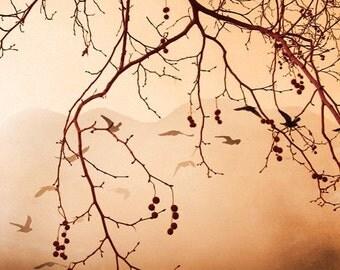 Digital photography download Romantic autumn photography nature landscape photography tree branches tan vanilla peach colors wall art