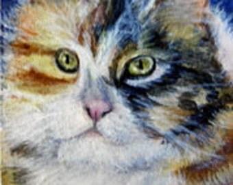 Aceo, Miniature, Tortoisehell Cat, Aceo Card, Original, SFA