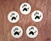 Five-toed Critter Pawprint Magnet Set