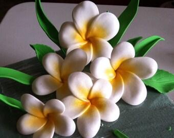 Gum Paste Hawaiian Plumeria White and Yellow