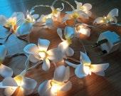35 Frangapani Flower Fairy Lights White 4 metres