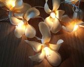 35 Frangapani Flower Fairy Lights Yellow 4 metres