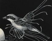 Fish Bird - Surrealist Oil painting