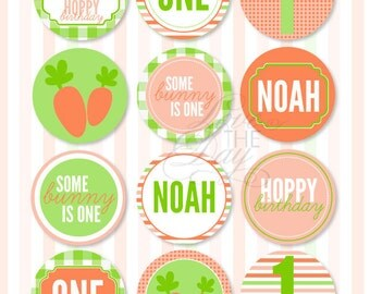 Hoppy Birthday Spring PRINTABLE Party Circles by Love The Day