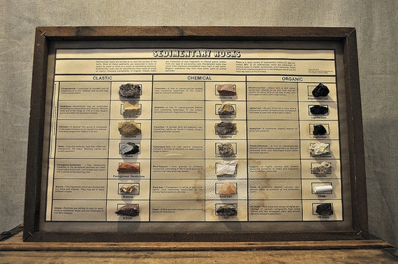 Vintage Sedimentary Rock Collection