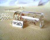 Reserved Listing. Wishes in the Wind. bottle locket necklace