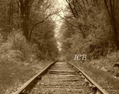 The Gateway 8X10 railroad tracks and woods Photograph