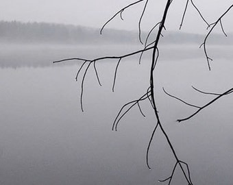 Photography Blank Note Card tree branch above lake free shipping chris peters mementos of the journey