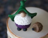 Mr. Green Hat Purple Pants Gnome and His Pet Hedgehog