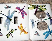 Dragonfly steel double light switch, outlet cover