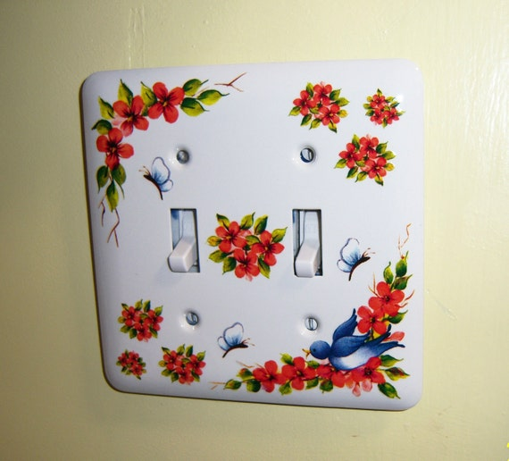 Blue Bird steel double light switch cover