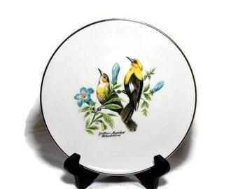Vintage Bird Decor Plate China Bird Art  Decor Blackbird Bavaria
